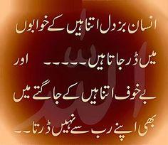 insaan itna bujdil hai whatsapp status