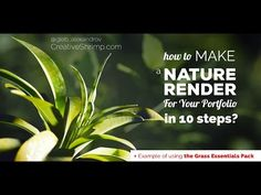 How to Make a Nature Render for Your Portfolio in Blender? - YouTube