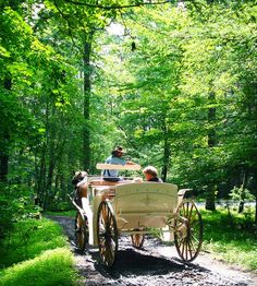 Cades Cove Riding Stables - carriage rides $12/person. Trail rides $30, six years old and 250 lbs. and under.