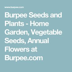 Burpee Seeds and Plants - Home Garden, Vegetable Seeds, Annual Flowers at Burpee.com