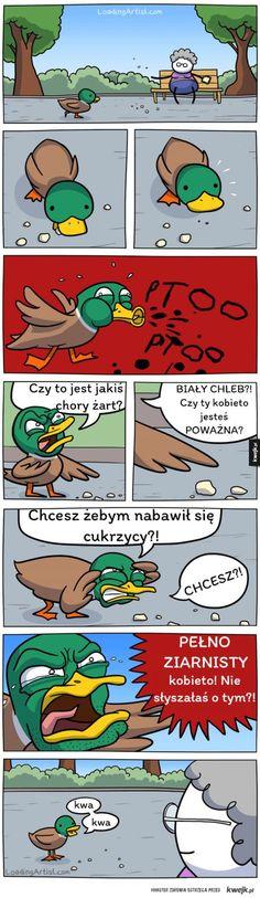 Karmienie kaczek