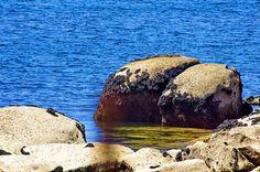 Cambados Galice Espagne 255 - Illa de Arousa