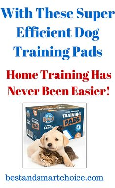 These training pads have wonderful powers of absorption, making it that much easier for owners to...continue reading by clicking here -->  http://bestandsmartchoice.com/2015/09/with-these-super-efficient-dog-training-pads-home-training-has-never-been-easier/