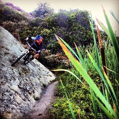 A trail-side wall ride in Laguna Beach. Mountain biking.