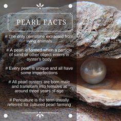 #FunFriday : #Pearl #PearlFacts #JuneBirthstone