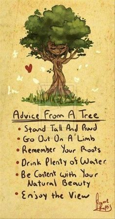 Advice From A Tree * Your Daily Brain Vitamin * motivation * inspiration * quotes quote of the day * QOTD * DBV * motivational * inspirational * friendship quotes * life quotes * love quotes * quotes to live by * motivational quotes * inspirational quotes * TITLIHC * wisdom