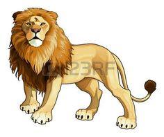 """Résultat de recherche d'images pour """"wild king"""""""