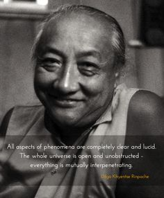 Everything is mutually interpenetrating ~ Dilgo Khyentse Rinpoche http://justdharma.com/s/wocl6  All aspects of phenomena are completely clear and lucid. The whole universe is open and unobstructed - everything is mutually interpenetrating.  – Dilgo Khyentse Rinpoche  source: http://www.nyingma.com/dzogchen1.htm