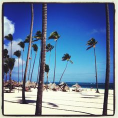 Punta Cana! YES we are going here for our HONEYMOON!!!!(: