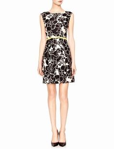 Belted Floral Dress | Women's Dresses | THE LIMITED