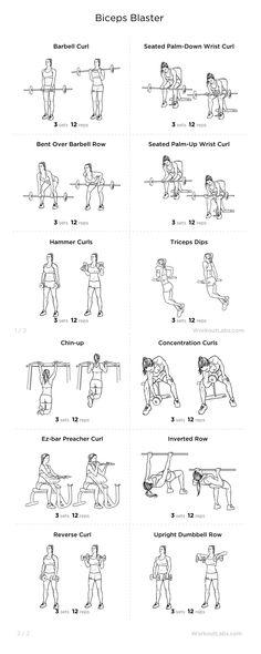 Ejercicios de Bíceps Gym