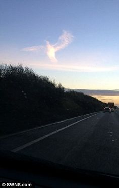 Angel?  Sherrie Abbott had been driving on the A17 between Sutton Bridge, Lincolnshire, and Kings ...