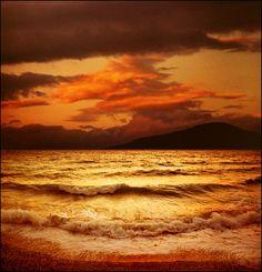 Golden sea-summer dream..:)) (by Katarina 2353)