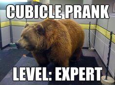 cubicle pranks - Google Search