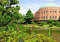 Where to view cherry blossoms, enjoy a summer picnic, admire the fall leaves or stroll through the winter greenery. The 20 top picks of Tokyo Japanese gardens, whenever you visit! Tokyo Guide, Tokyo Travel Guide, Riverside City, Tropical Greenhouses, Shinjuku Gyoen, Tokyo Museum, Temple Gardens, Tokyo Skytree, Cherry Blossom Season