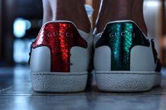 Tennis Gucci #gucci