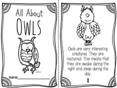 An owl reader your students will LOVE! {and learn so much from!}