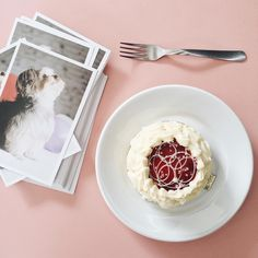 Bolo Maria Antonieta com postais do meu cachorro Spock em uma mesa cor de rosa.