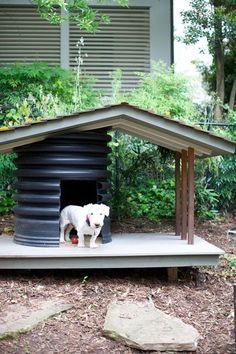"In addition to transforming the landscape, designer Chad Smith created a doghouse for Theo out of a recycled drainage pipe and wood. It has a seasonally planted green roof to keep ""the coolest of all pups,"" as Smith calls him, cool."