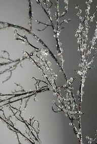 Branches with ice