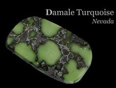 Damele Turquoise, Nevada   #dameleturquoise #nevadaturquoise #sunwestsilver Coral Turquoise, Turquoise Stone, Crystals Minerals, Rocks And Minerals, Gem Hunt, Turquoise Jewellery, American Indian Jewelry, Gay Art, Gem Stones