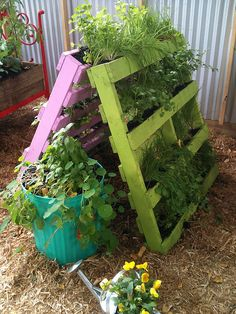 "Pallet garden with added color! Could also be a fun ""crawl space"" for the kids. Pallet garden with added color! Could also be a fun ""crawl space"" for the kids. Old Pallets, Pallets Garden, Recycled Pallets, Pallet Gardening, Wooden Pallets, Recycled Wood, Free Pallets, Vertical Planter, Vertical Gardens"