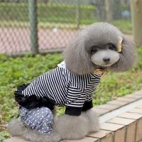 Pinstripe Shirt Dog Clothing (S)