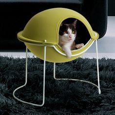 Modern Beds for Cats and Small Dogs – Pod by Hepper