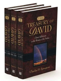 Treasury of David Spurgeon - 3 volumes Topical Sermons, Psalms Of David, David D, Life Changing Books, Charles Spurgeon, Book Gifts, Book Publishing, Writing A Book, Christianity