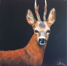 Paintings from all kind of animals… Rehbock, acryilc, 40 x 40 cm