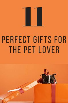 From high-tech toys to delicious treats and trendy accessories, we've rounded up our all-time favorite gifts to treat your furry family member. Surprise your pet on any occasion with these unique gift ideas for dogs and cats. Huge Dogs, I Love Dogs, Dog Christmas Presents, Presents For Dog Lovers, Puppy Pictures, Pet Health, Cat Gifts, Holiday Gift Guide, Doggies
