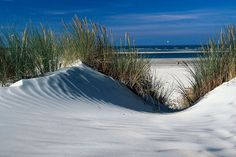 Dünen auf Baltrum Paradise, Spirituality, Waves, Ocean, Island, Beach, Outdoor, Country, Inspiration