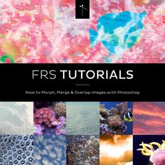 FRS TUTORIALS: How to Morph, Merge & Overlap Images With Photoshop