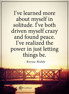 I've learned more about myself in solitude. I've both driven myself crazy and found peace, I've realized the power in just letting things. - Reyna Biddy #powerofpositivity #positivewords #positivethinking #inspirationalquote #motivationalquotes #quotes#life #love #solitude #peace #reynabiddy #reynabiddyquotes