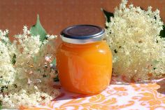 Blogschokolade & Butterpost: Orangen-Holunderblüten-Marmelade