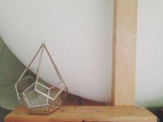 Teardrop Terrarium - glass - ABJ Glassworks