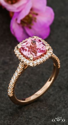 Blush Pink Sapphire Halo in Rose Gold with French Pavé. Green Lake Jewelry 121141