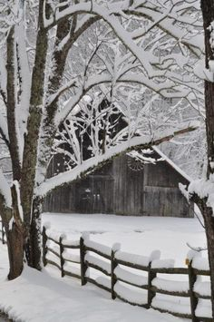 snow - reminds me of the farm where I grew up!
