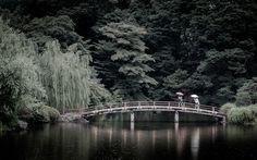 https://flic.kr/p/zQ18w2 | City Refreshment | Tokyo, Shinjuku garden in rainy season ... It's such a city refreshment period.