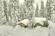 House vacation rental in Yosemite Area.