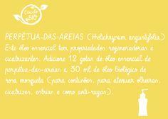 Perpétua-das-areias  Helichrysum