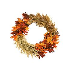 "22"" Grain & Fall Leaves Wreath Dried Wreaths ($69) ❤ liked on Polyvore featuring home, home decor, fall, flowers, decorative accessories, floral home decor, autumn home decor, orange home decor, autumn wreath and fall wreaths"