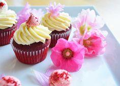 red velvet cupcakes   @langijo