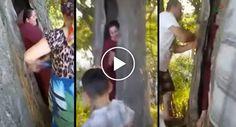 Quantos Amigos São Precisos Para Se Tirar Uma Pessoa Do Interior De Uma Árvore?