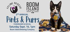 Details http://felinerescue.org/2017/09/2nd-annual-pints-and-purrs/