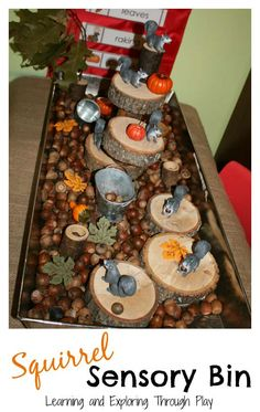 Learning and Exploring Through Play: Autumn Squirrel Sensory Bin (Halloween Table Sensory Bins)