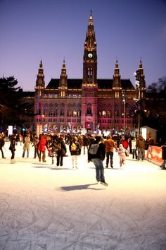 The 3rd place in this link (pictured) looks/sounds amazing! http://news.viennaresidence.com/blog/three-most-amazing-ice-skating-places-vienna