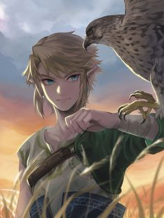 Link, Die Legende von Zelda: Twilight Princess - The Legend Of Zelda - Game The Legend Of Zelda, Legend Of Zelda Breath, Zelda Twilight Princess, Link Zelda, Fantasy Male, Breath Of The Wild, Video Game Art, Video Games, Super Manga