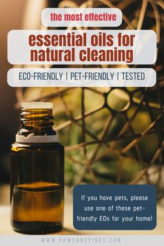 10 Most Effective (Pet-Friendly) Essential Oils for Home Cleaning Are Essential Oils Safe, Essential Oils Cleaning, Essential Oil Uses, Millionaire Lifestyle, Cleaning Solutions, Cleaning Hacks, Plastik Recycling, Natural Cleaners, Pet Care Tips