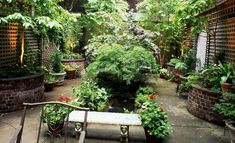 urban home gardens | With these simple tips, now you can be the Hostess with the mostess ...